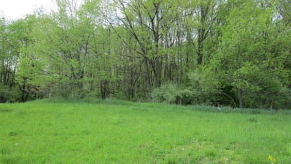 35 Arapaho Trail<br>Coldwater, MI 49036